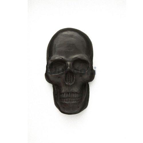 【Batle Studio】Curio Skull