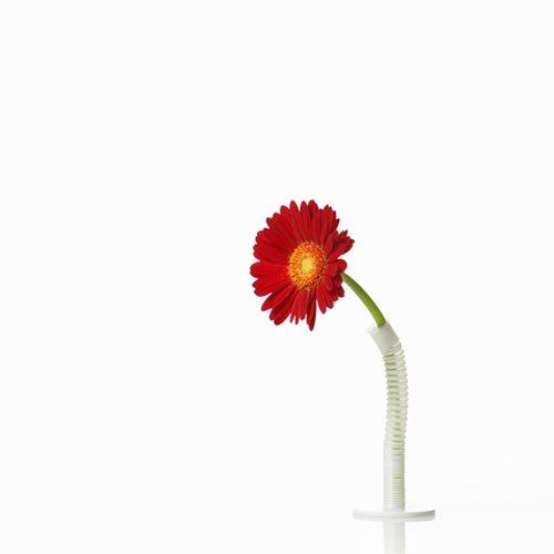 【100%】Straw Vase