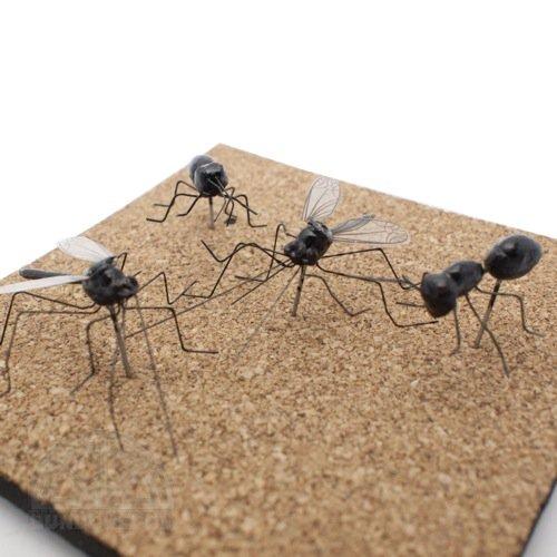 【KIKKERLAND/キッカーランド】Insect Pushpin