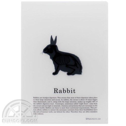 【PlasticArts】アニマルクリアフォルダ(ウサギ)