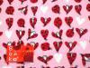 母子手帳ケース EHAKO 母子手帳ケース Lサイズ Ehako(エハコ) 母子手帳ケース レディバード L(ビニールコーティング)