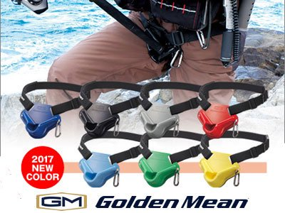 Golden Mean Pad Mini