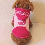 SUPER DOGGY スーパードギーパーカー(ピンク)(S〜XL)※裏起毛 ドッグウェア 犬の服 ルイスペット【送料送料♪】