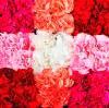 辛口ピンクのグラデーションは、あらゆるシーンにおすすめ! 当店でも人気のアレンジです。
