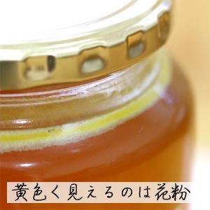 日本蜜蜂(ニホンミツバチ) 幻のはちみつ 300g (国産)