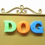 ヴィンテージ雑貨  アルファベット マグネット DOG