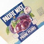 パッケージ&パッケージに味のある雑貨&チーズボックスなど  ラベルシート Prune Plums缶 未使用パッケージ紙