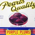 チケット、スコアパッドなどの紙物・紙モノ雑貨  ラベルシート Purple Plums缶 未使用パッケージ紙