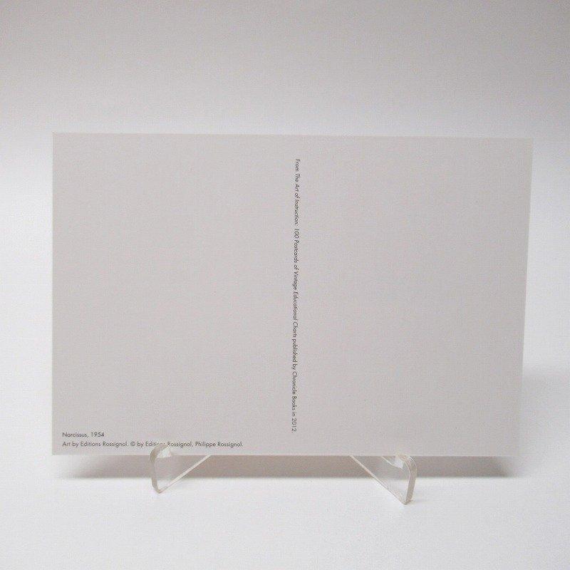 ヴィンテージポストカード 1954年復刻版 Narcissus 未使用【画像5】