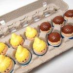 トドルトッツ  トドルトッツ リトルタイクス フィッシャープライス 紙製卵ケース入りお得な12体セット A