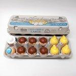 トドルトッツ  トドルトッツ リトルタイクス フィッシャープライス 紙製卵ケース入りお得な12体セット G2