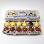 トドルトッツ  トドルトッツ リトルタイクス フィッシャープライス 紙製卵ケース入りお得な12体セットH1
