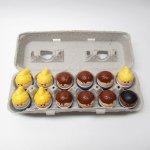 トドルトッツ リトルタイクス フィッシャープライス 紙製卵ケース入りお得な12体セットH2