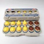トドルトッツ  トドルトッツ リトルタイクス フィッシャープライス 紙製卵ケース入りお得な12体セットI1