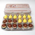 トドルトッツ  トドルトッツ リトルタイクス フィッシャープライス 紙製卵ケース入りお得な18体セット B2