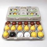 トドルトッツ リトルタイクス フィッシャープライス 紙製卵ケース入りお得な18体セット C1