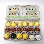 トドルトッツ リトルタイクス フィッシャープライス 紙製卵ケース入りお得な18体セット C2