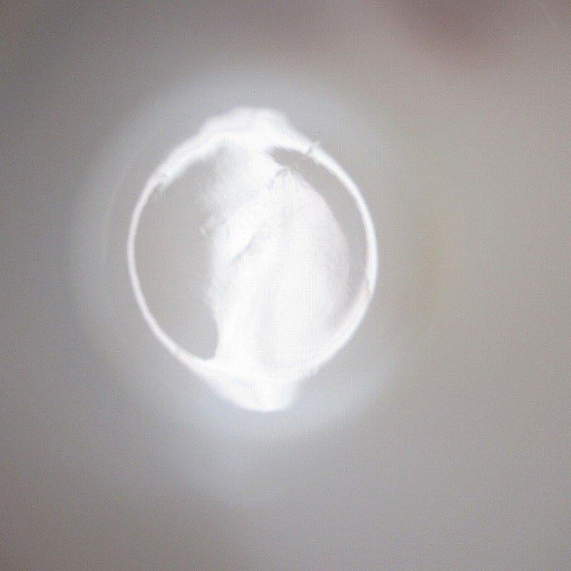 ファイヤーキング  マグ カントリーキッチン B【画像5】