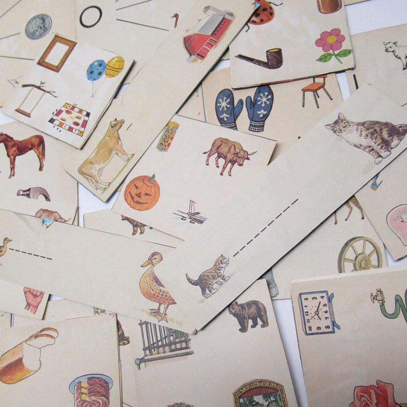 紙モノアソート 1950年代〜 子供単語学習用 イラストセット C