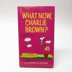 スヌーピー  スヌーピーコミックブック What now, Charlie Brown A