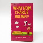 ブックス  スヌーピーコミックブック What now, Charlie Brown B