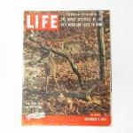 LIFE  ライフマガジン LIFE誌 1954年 11月8日号 オリジナルポテトヘッドトイ広告有