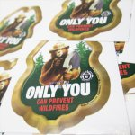 ヴィンテージ雑貨  スモーキーベア オフィシャルグッズ 並行輸入品 ONLY YOU WILD FIRE 緑 ステッカー