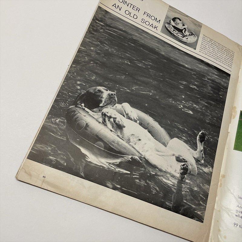 ライフマガジン LIFE誌 1967年7月14日号ワンダーブレッド広告有【画像8】