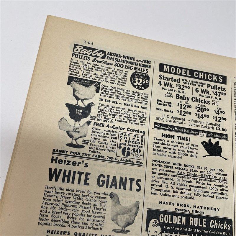 ヴィンテージマガジン ファームジャーナル 1949年6月号 パイレックス広告有【画像5】
