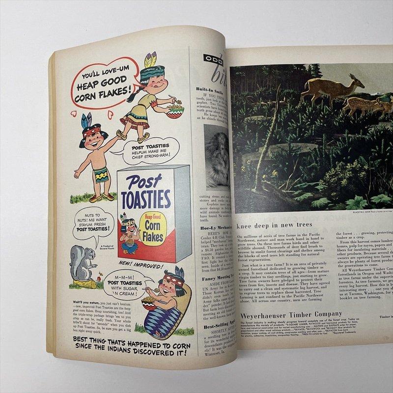 ヴィンテージマガジン ファームジャーナル 1952年5月号【画像8】
